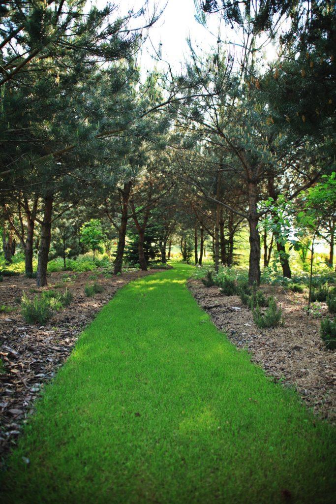 ogrod-wypoczynkowy-1