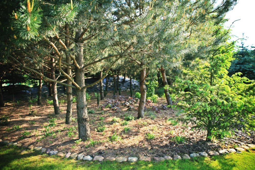 ogrod-wypoczynkowy-10