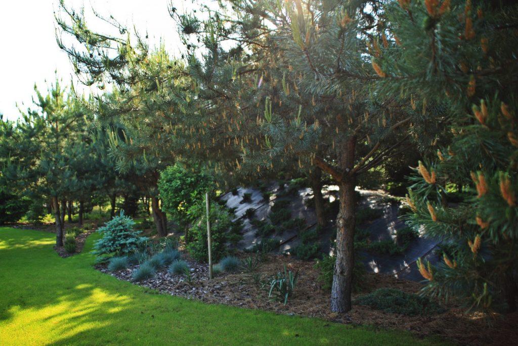 ogrod-wypoczynkowy-13